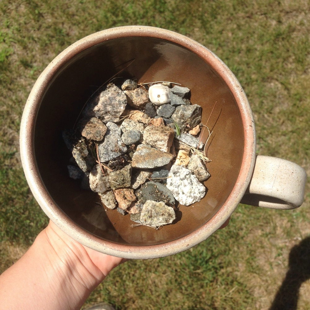 Repurpose a broken or chipped coffee mug into a kitchen herb garden