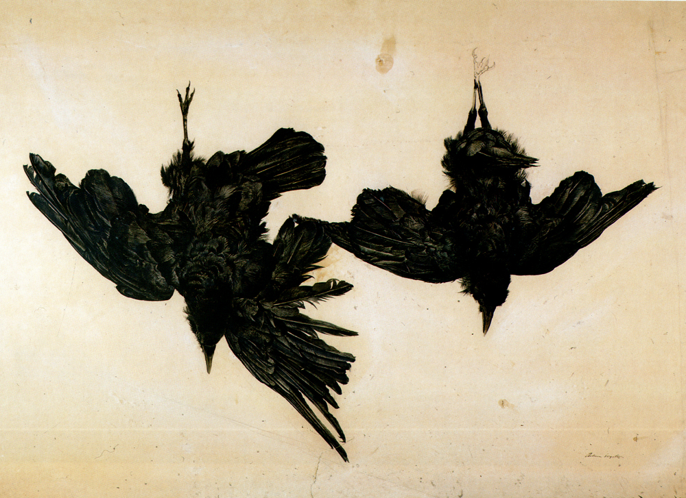 """Without solitude true happiness was impossible. The fallen angel was faithless to God probably only because he longed for solitude, which angles knew not.""   Anton Chekhov,  Ward No. 6    ( Andrew Wyeth ,   Crows)"