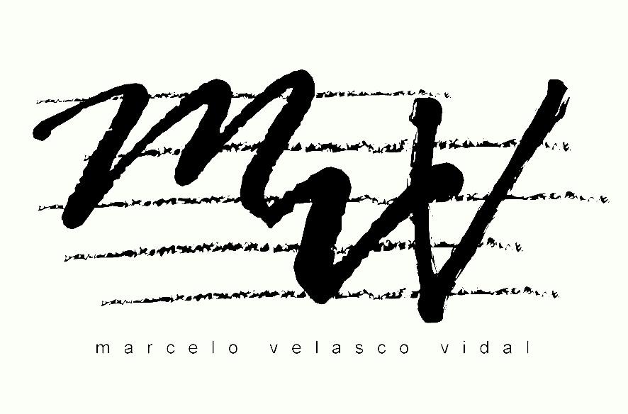 logo mvv.jpg