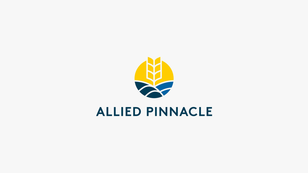 allied-pinnacle-brand-logo-design-agency-chello-sydney