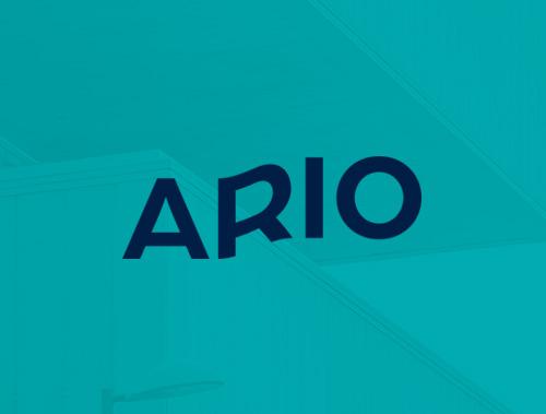 <tag>design, branding, digital</tag> Ario <br> Brand Identity