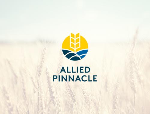 <tag>design, branding, digital</tag>Allied Pinnacle<br>Brand Merger