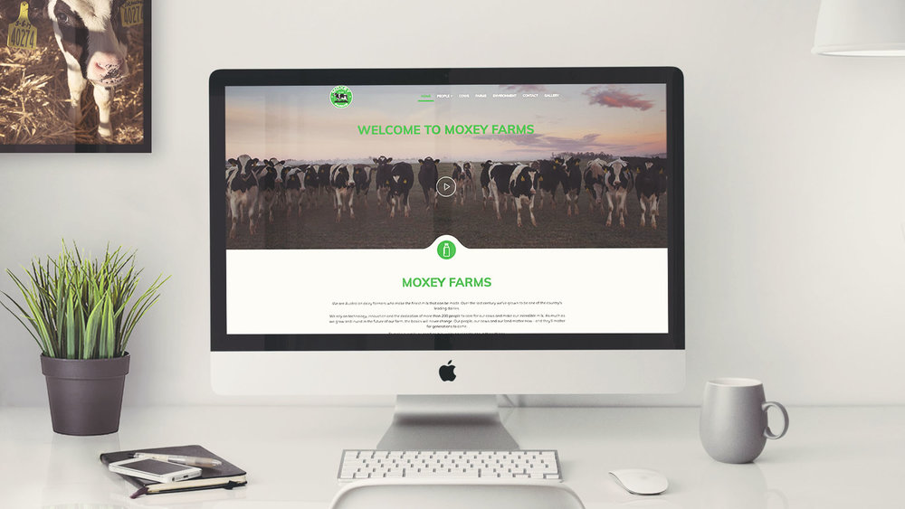 Moxey-Farms-website-design-photography-brand-sydney-agency