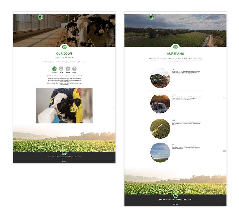Website-design-Moxey-Farms-sydney-agency-chello