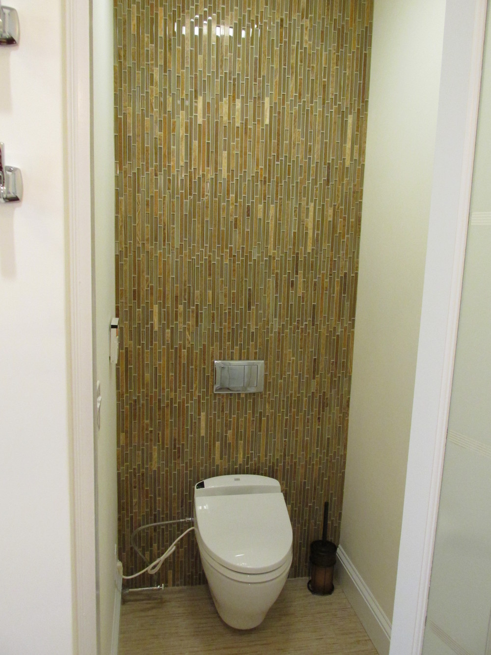 Wall Hung Toilet.JPG