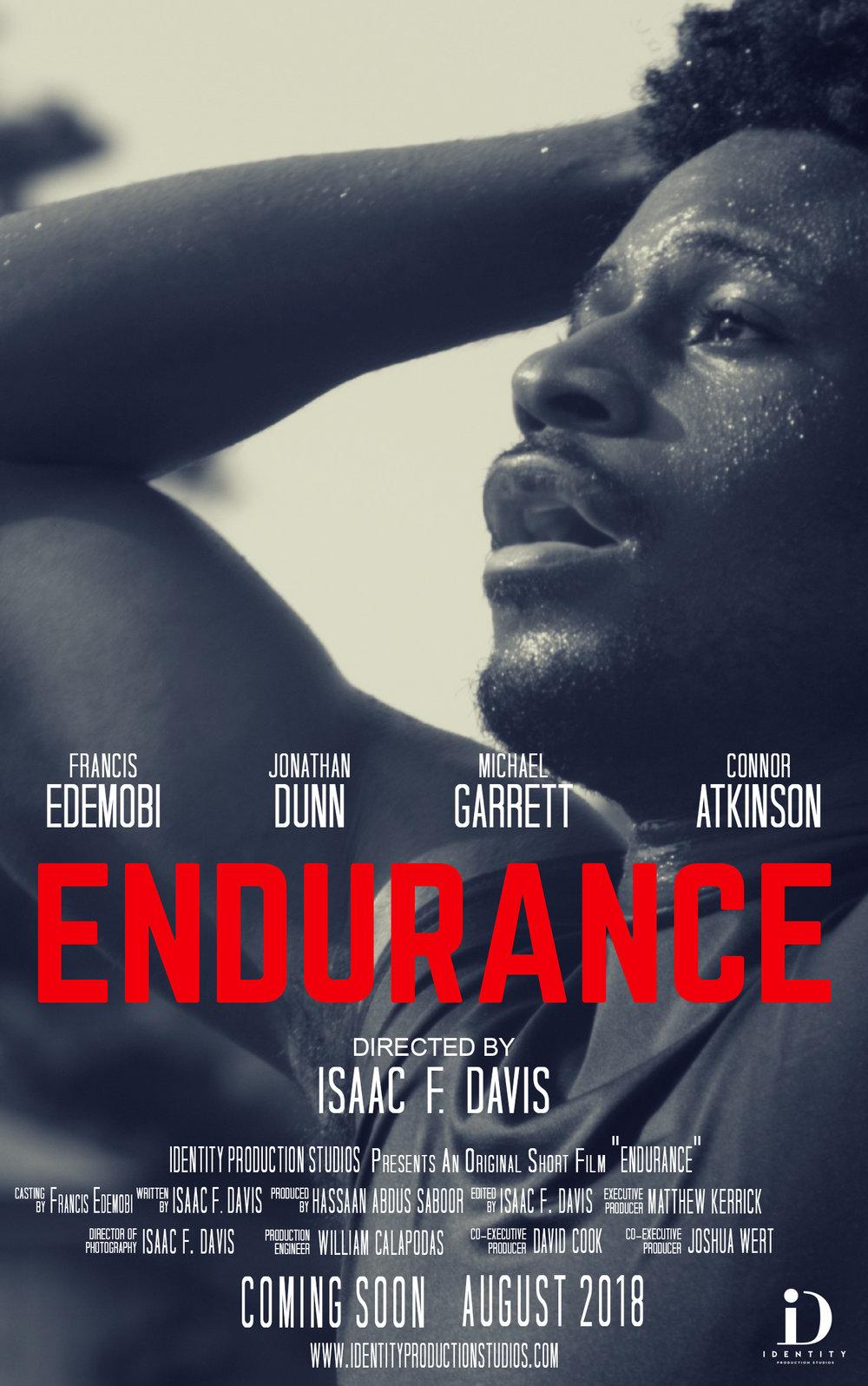 ENDURANCE FILM Poster V_1.jpg