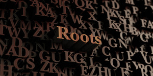 rootsclose