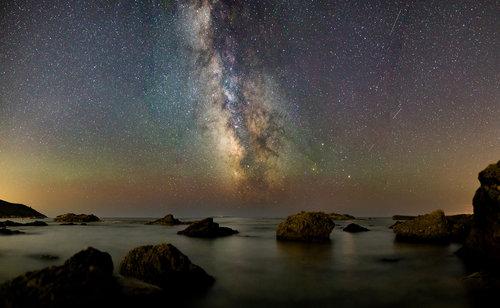 cosmos+web.jpg