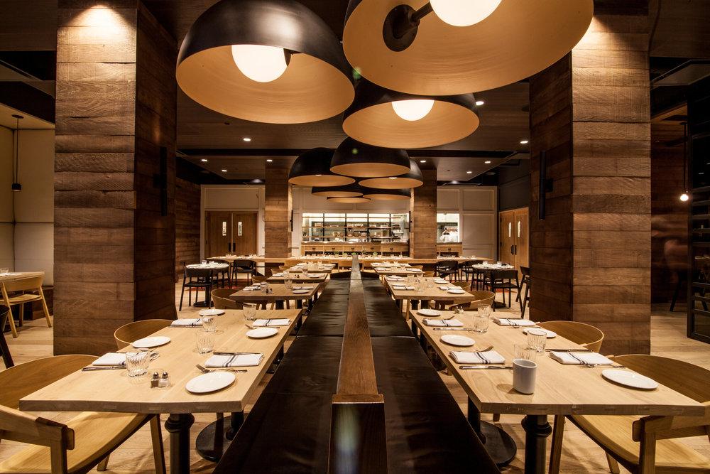 restaurant portfolio - download