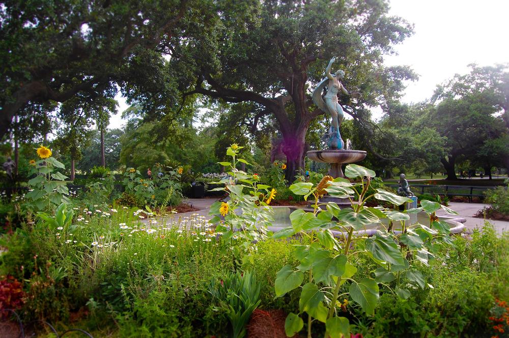 Audubon Park, New Orleans, 2013