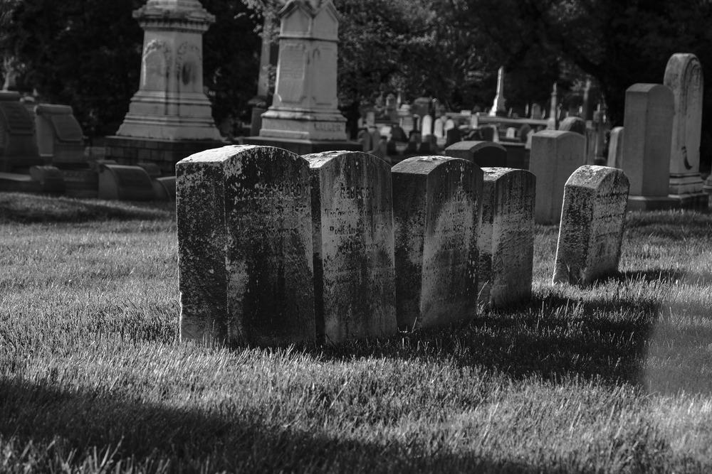 Woodlands Cemetery, Philadelphia, 2014