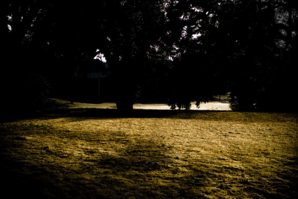 landscape_dec2014_028.jpg