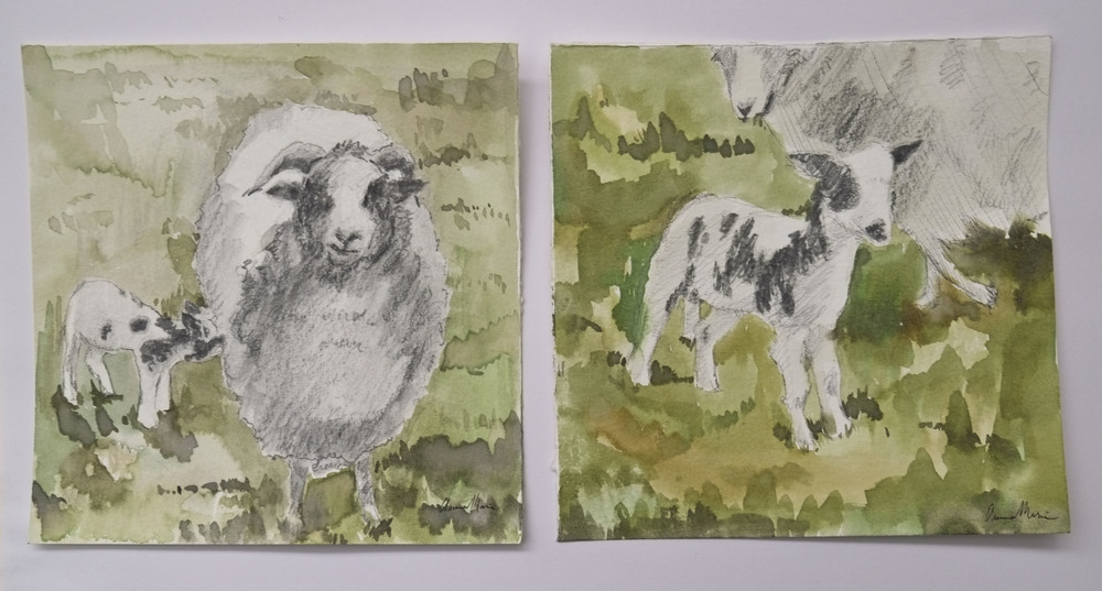 sketch_sheep.JPG