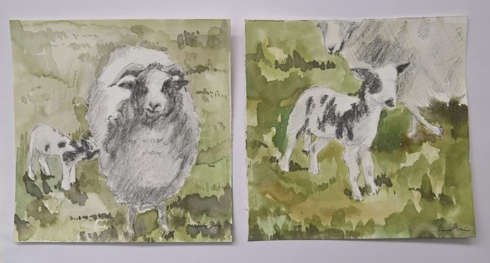 sketch_sheep.JPG