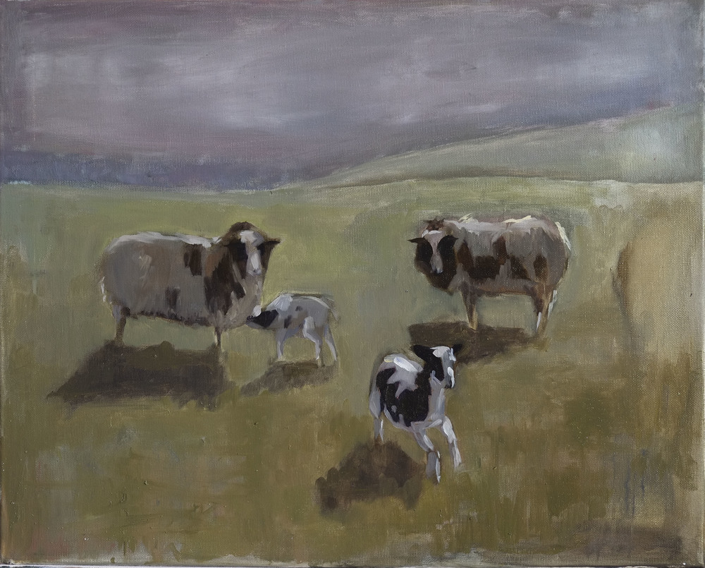 "Dreaming Sheep with Cow Spots,  2015  oil on canvas, 16""x20"""