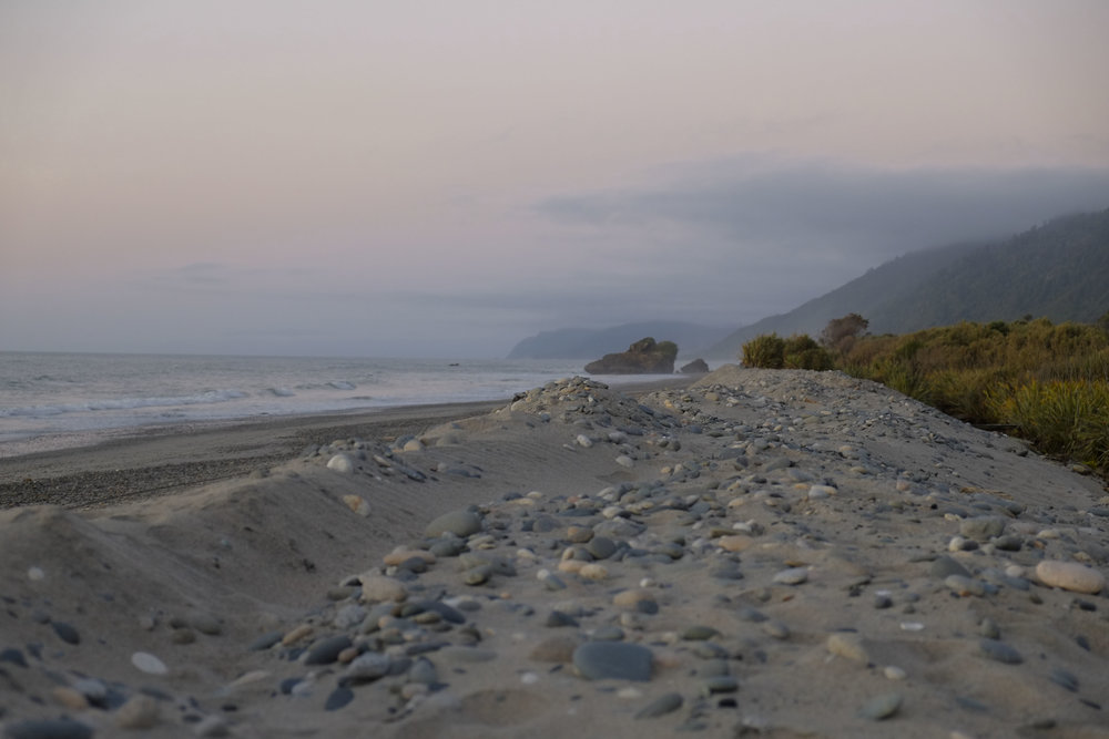 West Coast, South Island, NZ 2017