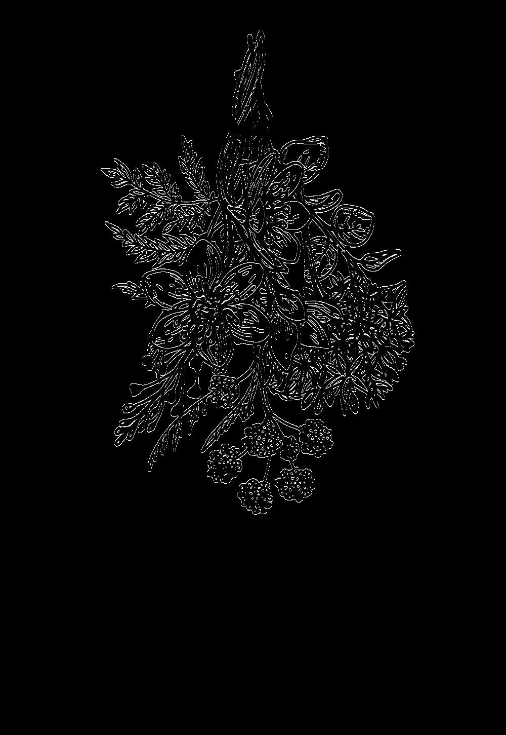 LL-Logo-Full.png