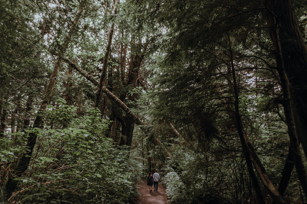 Pacific Northwest forest engagement session.