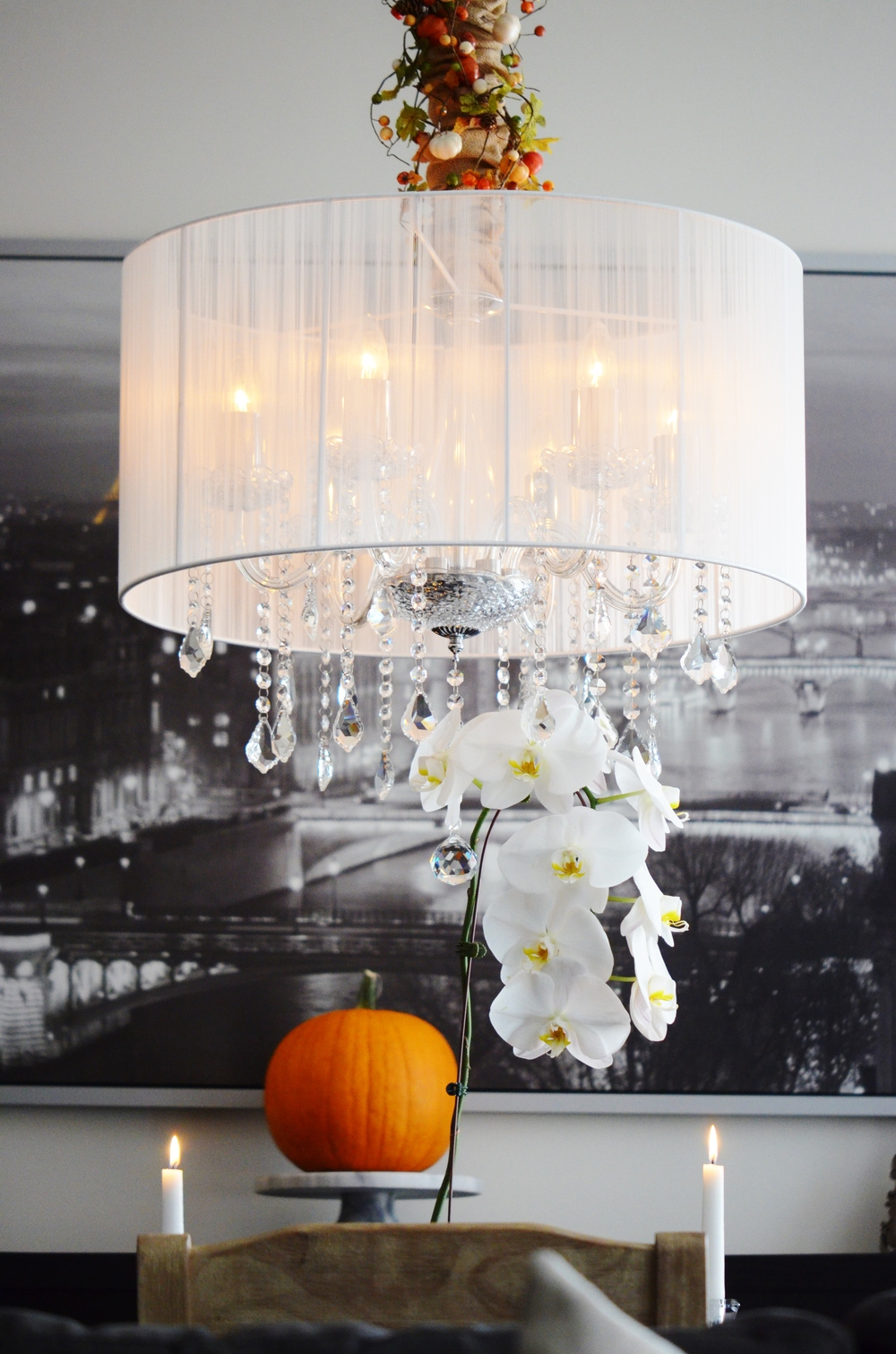 "A simple white orchid is timeless and ""season-less, making it a perfect backdrop for all decorating and design themes and concepts."