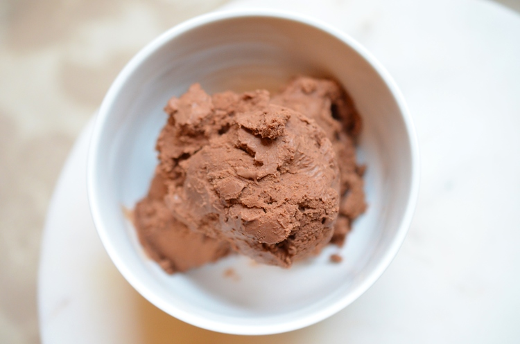 Salted Chocolate Ice Cream