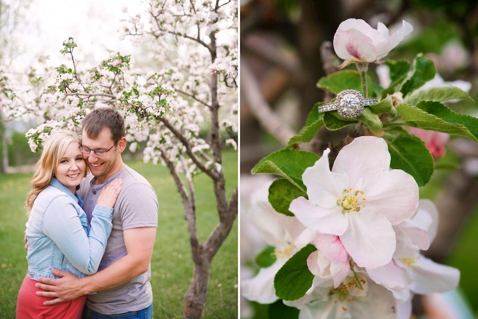 maddie-mae-photo-maddiemaephoto-maddie-mae-photography-madeleine-wilbur-apple-tree-blossom-spring-engagement-shoot-photoshoot-lone-hawk-farms-engagement-wedding-longmont-colorado-photographer 9