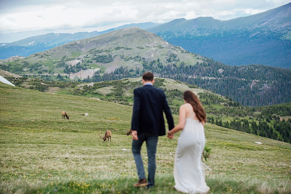 This couple got a herd of elk in the background of their wedding photos in Rocky Mountain National park. Photo by Maddie Mae Photography.