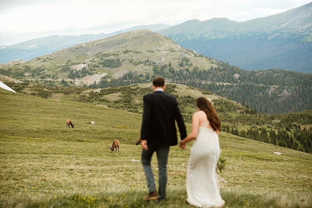 I love seeing this couple interact with the wildlife that came out on their wedding day! Such a fun way to celebrate the new marriage! | Elk mountain elopement photos by rmnp wedding photographer, Maddie Mae.