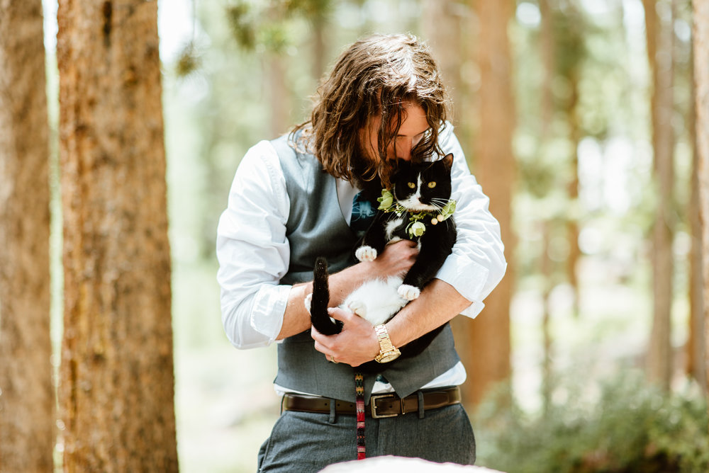 "So precious that Erin and Graham had their cat ""quandry"" or the famous ""@exploration_cat"" attend their wedding too! 