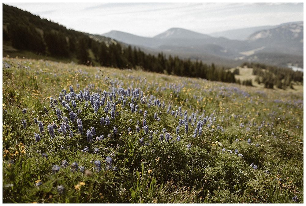 Summer in Colorado is always stunning, but there's something especially magical about the wild flowers that can be found around Scarp Ridge in Crested Butte making it the most perfect location for intimate elopement in the mountains. Photos by traveling wedding photographer Maddie Mae.