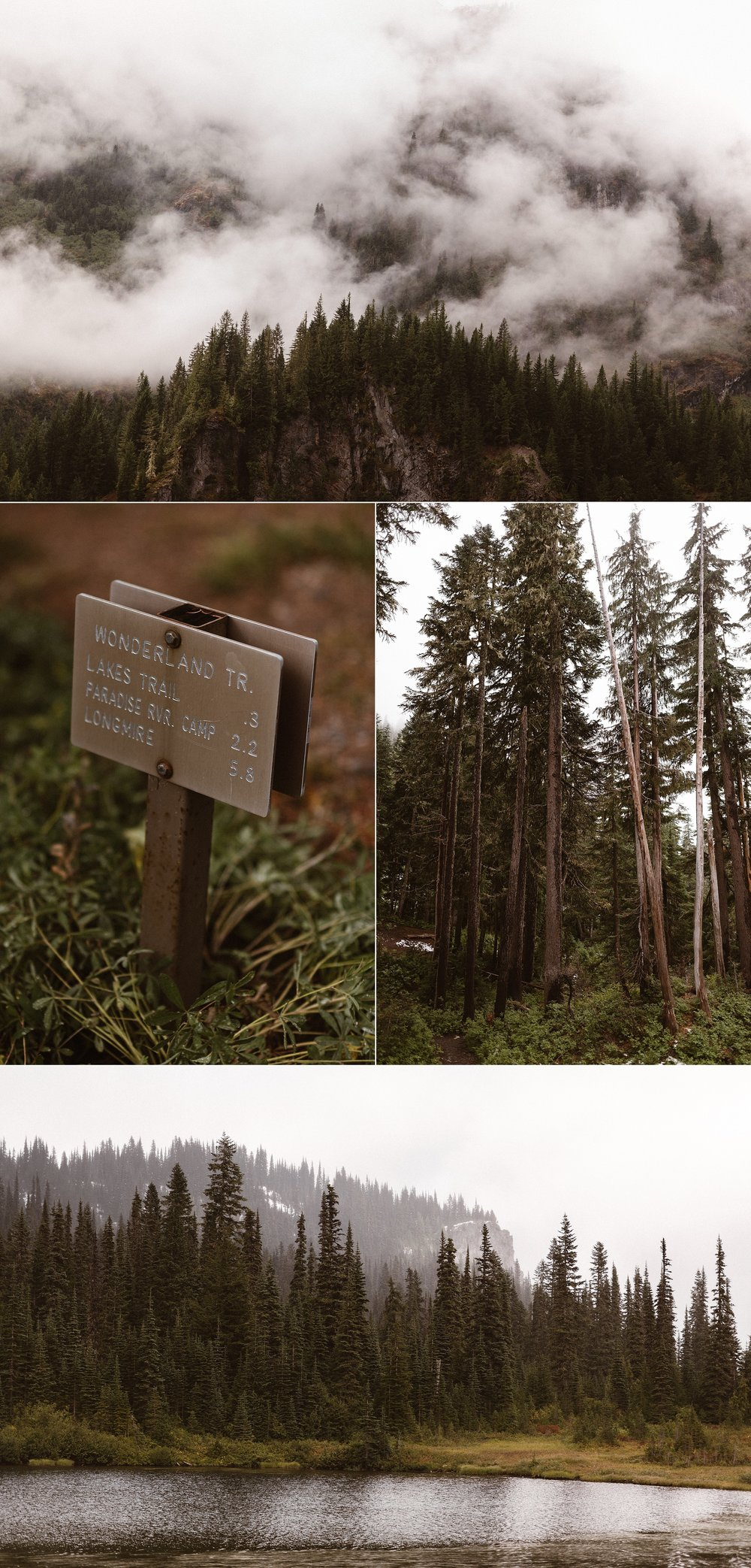 Mount Rainier National Park is one of the most stunning green places. The tall evergreens that peek out from the fog and the tranquil breezes that bring movement to the lakes and streams make a magical flora and fauna backdrop for a romantic elopement in the forest. Photos of this Washington intimate wedding in the woods by traveling photographer Maddie Mae.