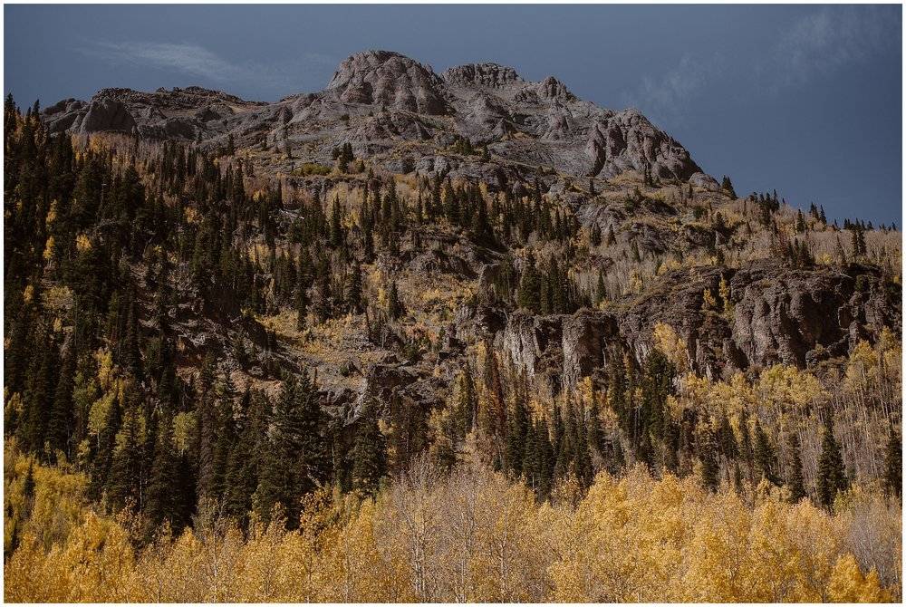 A golden bloom of aspens in fall is shown growing at the base of an Ouray, Colorado mountain. This rocky mountain is peppered with green trees and golden grass, the truly beautiful colors of Fall.