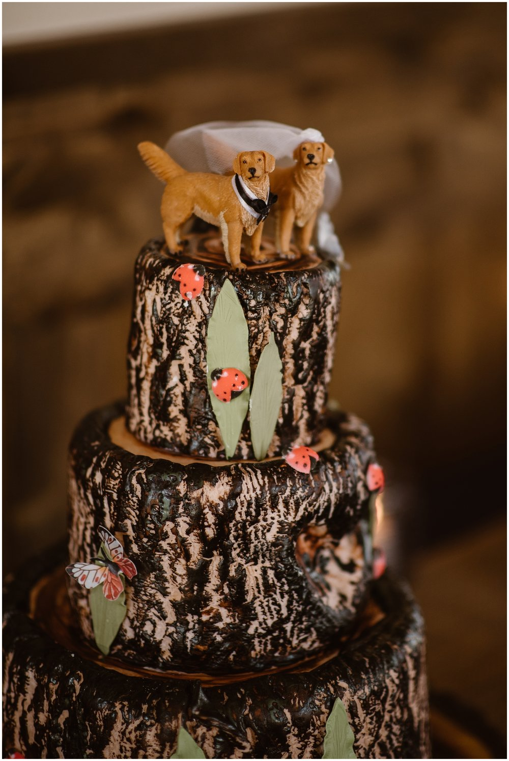A triple-tiered wedding cake is shown in this image captured by elopement photographer Adventure Instead—-the top of the cake features two dog cake toppers. This is just one of the unique eloping ideas you can include in your elopement ceremony if you're looking for ways of how to incorporate your dog in your wedding.
