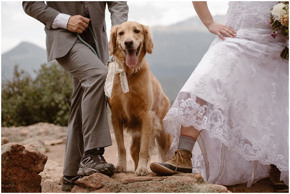 A smiley Golden Retriever stands next to its humans as they tie the knot. The bride and groom, both wearing hiking boots and wedding attire, pose with their pooch for their wedding pictures with their dog. The golden dog has a lace ribbon tied around its leash to match the bride's lace dress.