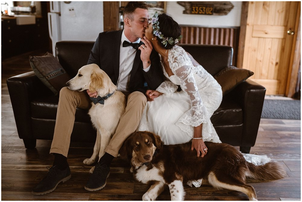A bride and groom sit on a leather couch with their two dogs. The bride and groom lean in to kiss each other as their pups lounge around by their feet. This small simple wedding included wedding pictures with the dogs.