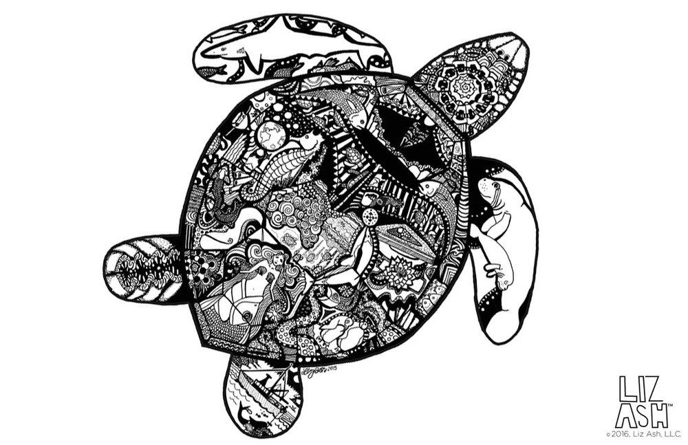 LizAsh_Turtle.jpg