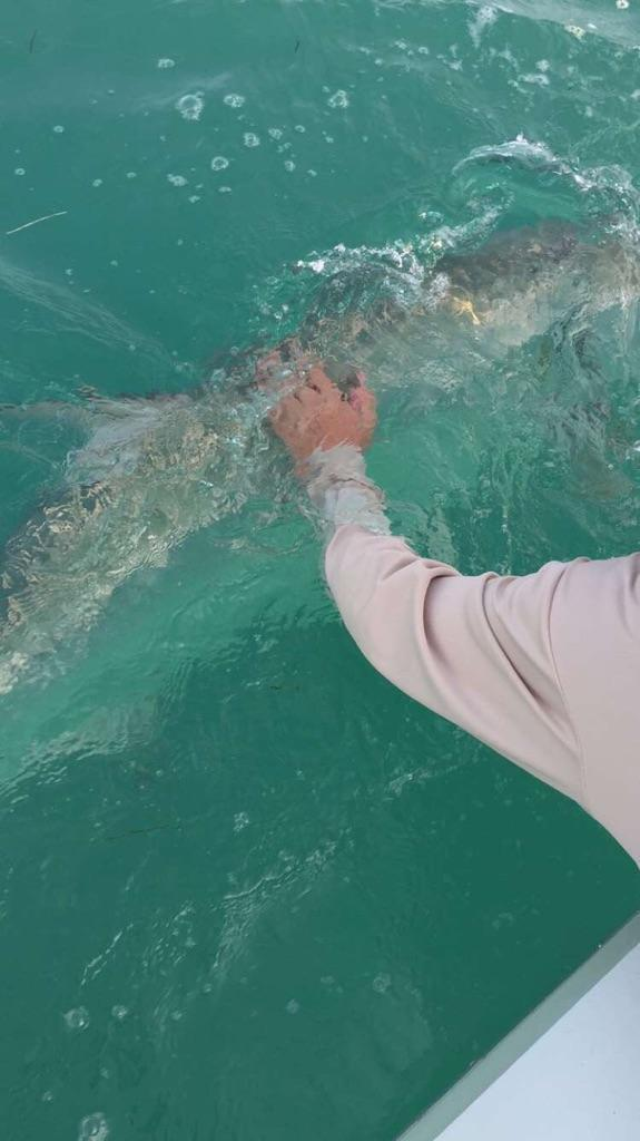 Tarpon Fishing, Islamorada, Florida