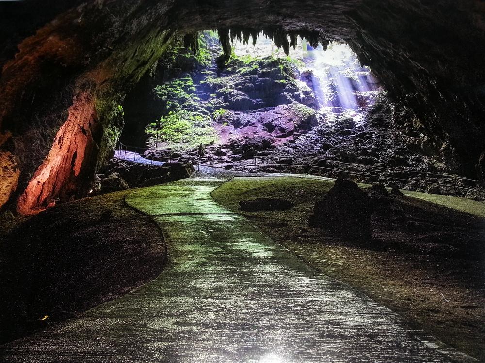 Parque Cavernas de Camuy.jpg