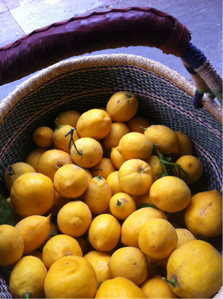 Neighborhood lemons are the best lemons.