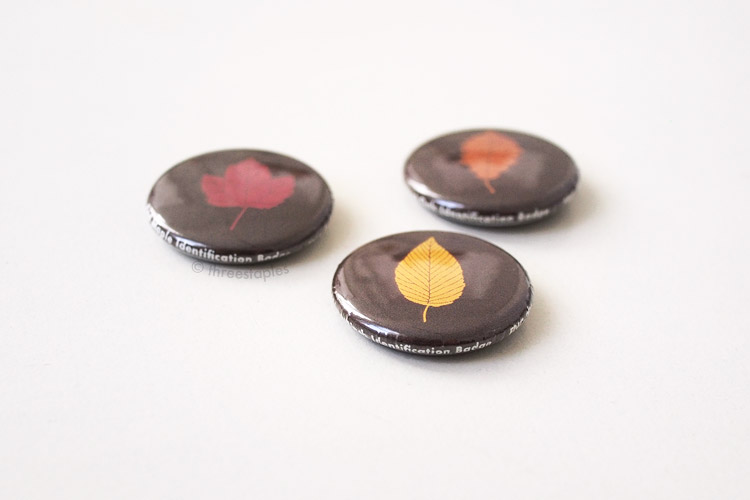 One-inch buttons for subscribers: Leaf Identification Badges. Backrim texts include item numbers. Can't tell from this picture but some of my buttons were assembled crookedly, making the white  texts appear on the front of the button. Still, they are very cute and look almost... edible. Like chocolates. Mmm.