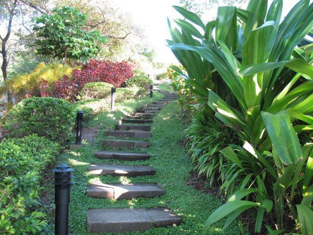Blue Spirit steps