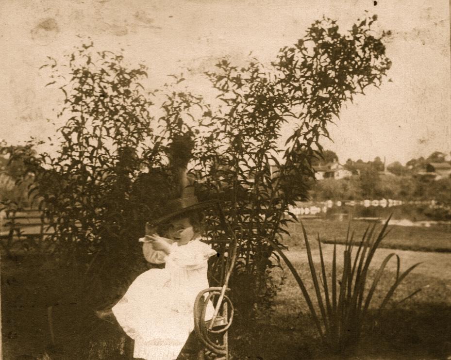 Stock - Florentine - 1898.jpg