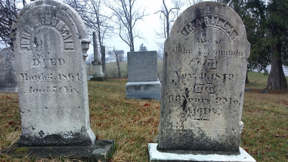 The Schows found these stones in Goodrich Cemetery. They are for John and Marilla fountain.