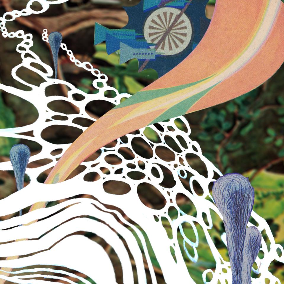 Album artwork for Tom Comerford