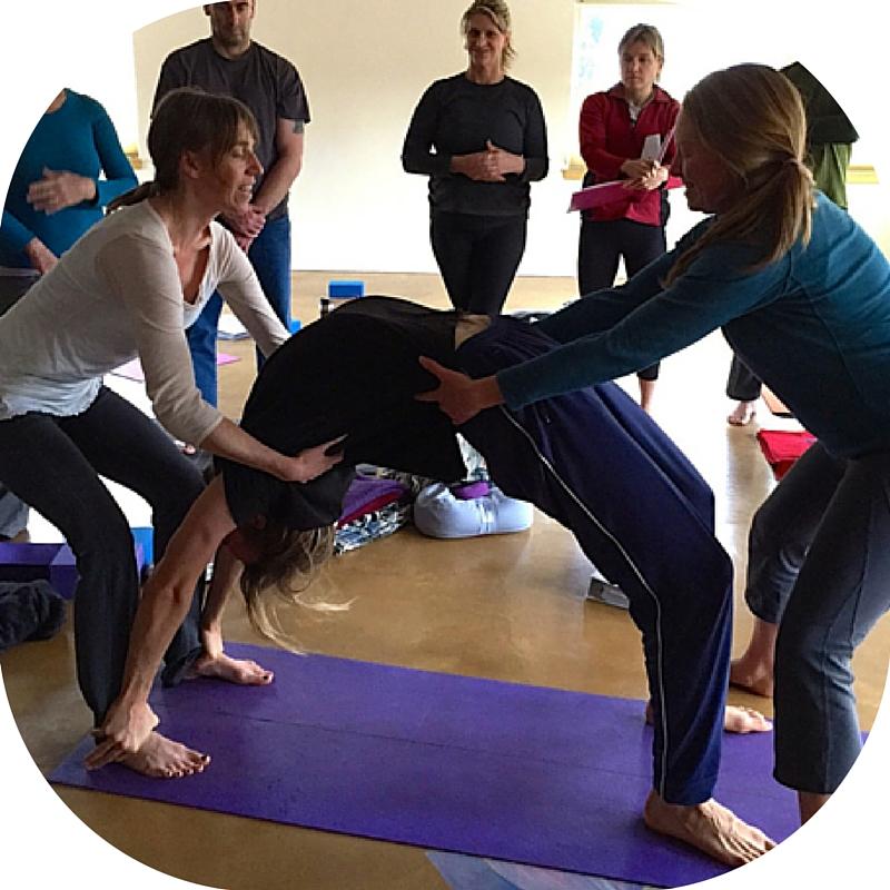 Embodied Anatomy Yoga Embodied Beginnings
