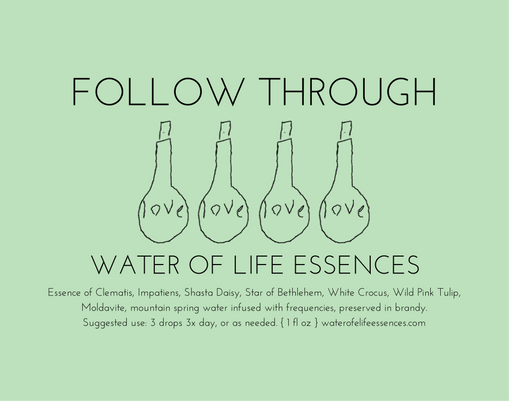 follow through water of life essences
