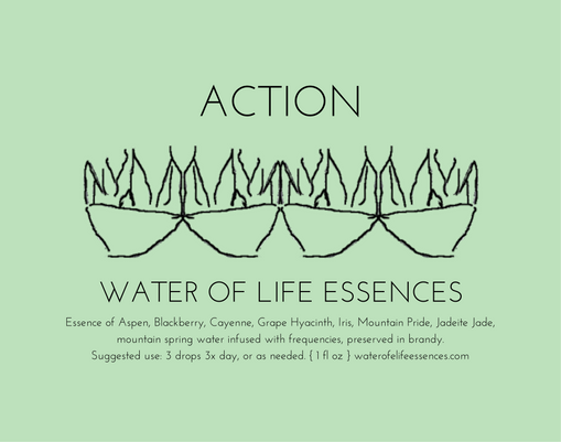 action water of life essences