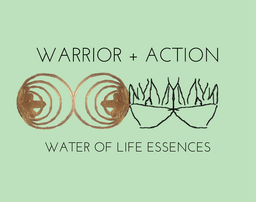warrior action water of life essences