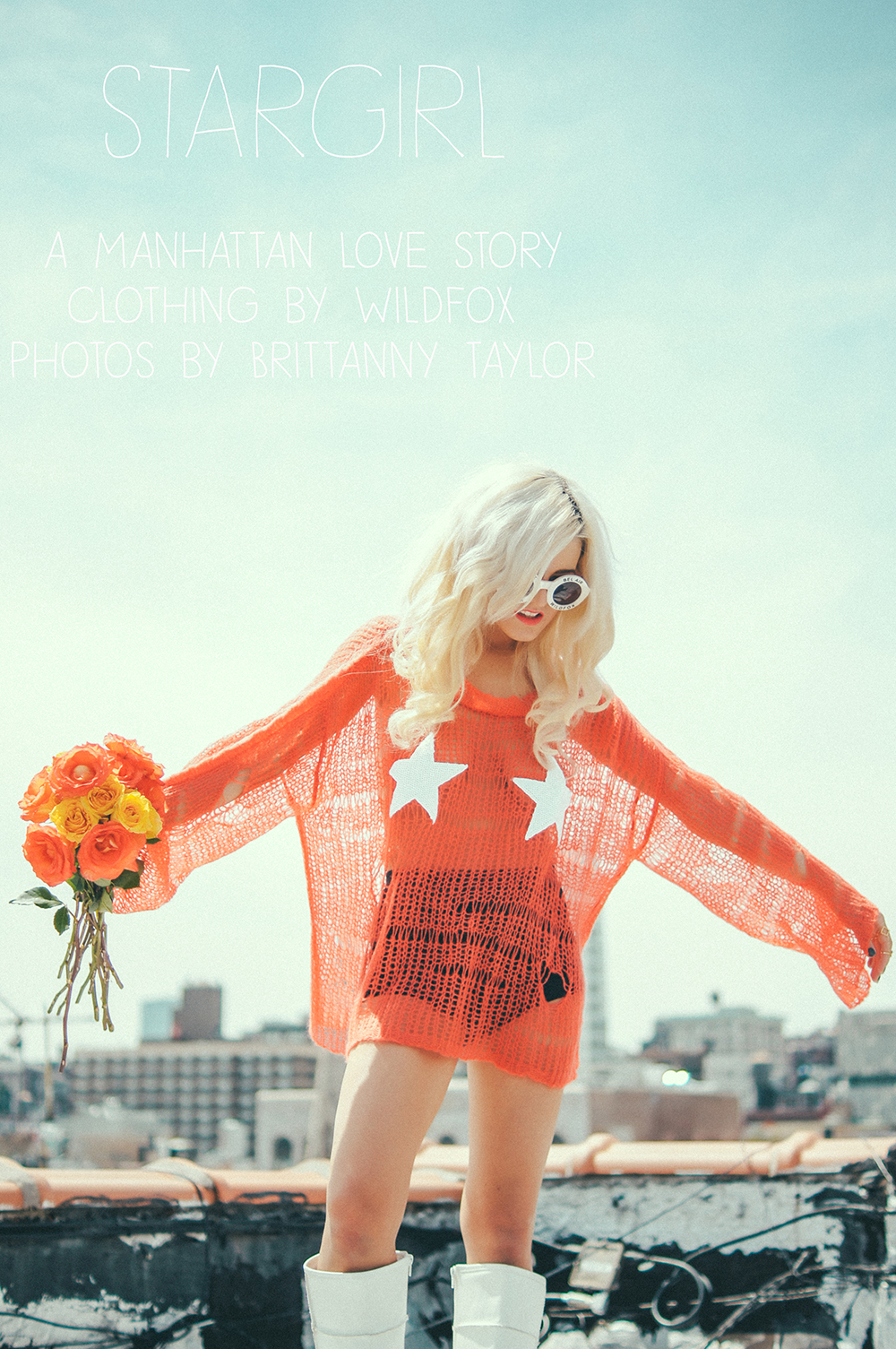 wildfox, rachel lynch, i hate blonde, royal romance