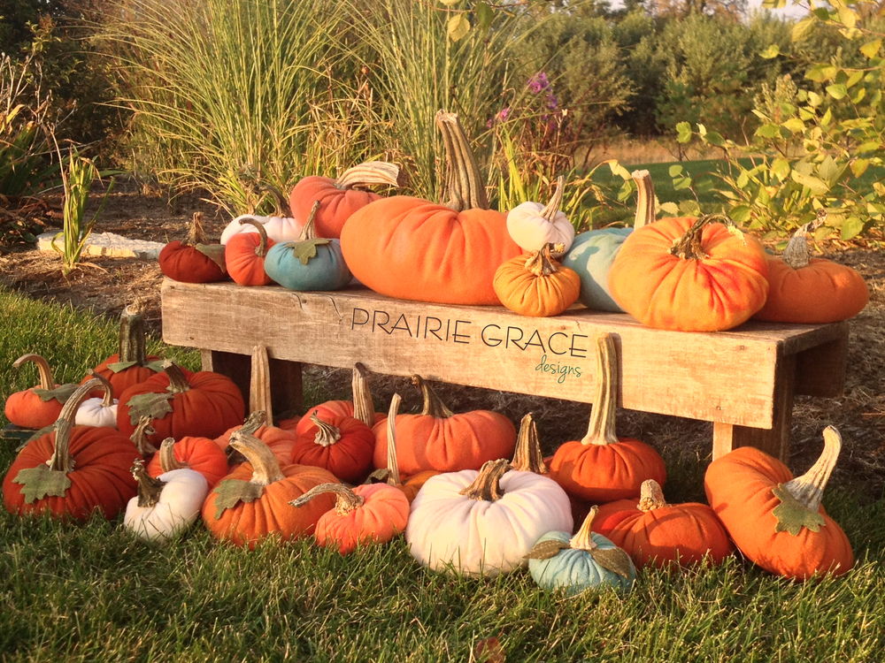 PGD_pumpkins.jpg