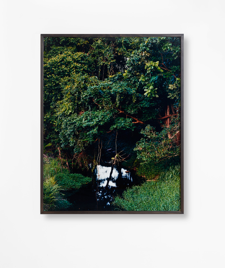 %22Freshwater Creek%22 2014 (From the series Deep North) Traditional archival darkroom print.jpg